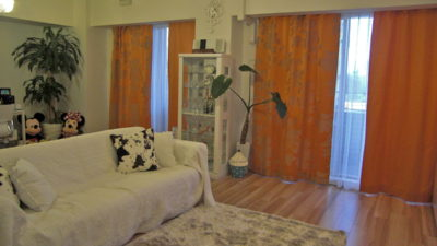 福島区の高層マンションにbaumannのジャガードカーテンで彩ろう!