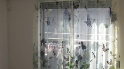 蝶が飛び交うパピヨンボイルレースカーテンでエレガンスモダンに 兵庫県尼崎市